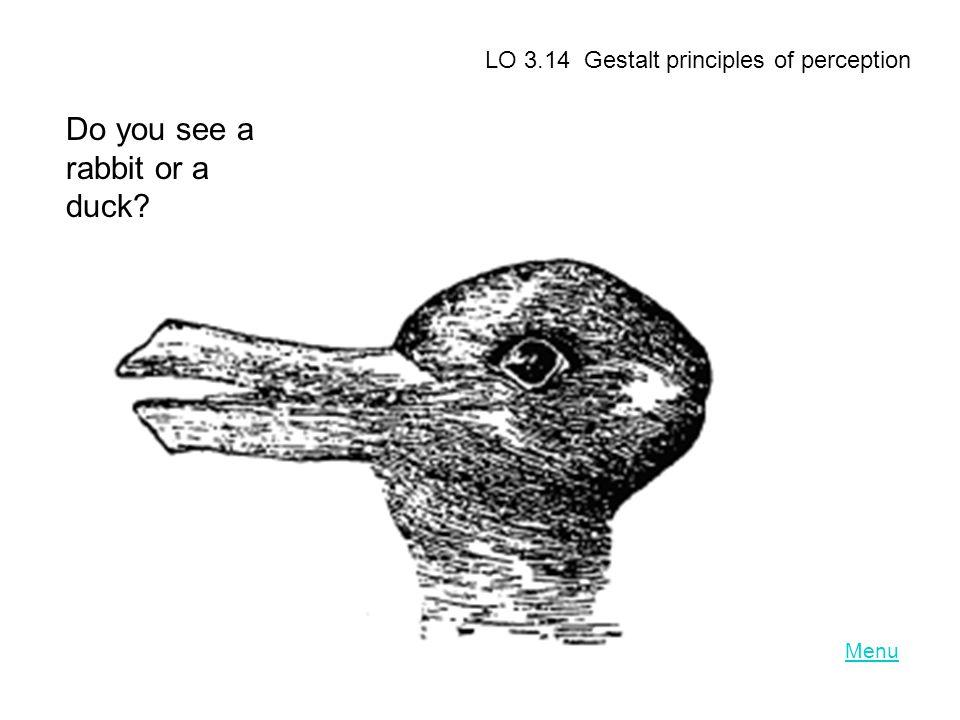 Menu LO 3.14 Gestalt principles of perception Do you see a rabbit or a duck?