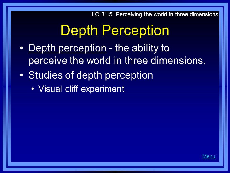 Depth Perception Depth perception - the ability to perceive the world in three dimensions.