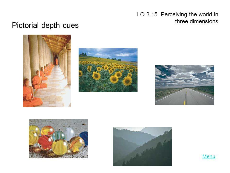 Menu LO 3.15 Perceiving the world in three dimensions Pictorial depth cues
