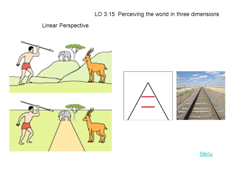 Menu LO 3.15 Perceiving the world in three dimensions Linear Perspective