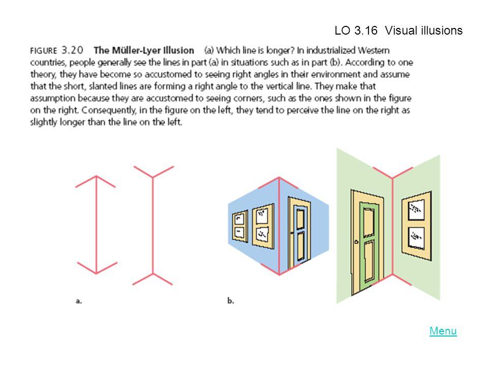 LO 3.16 Visual illusions