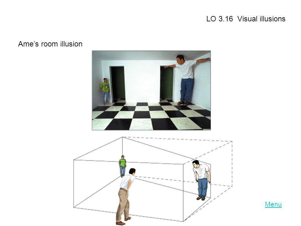 Menu LO 3.16 Visual illusions Ame's room illusion