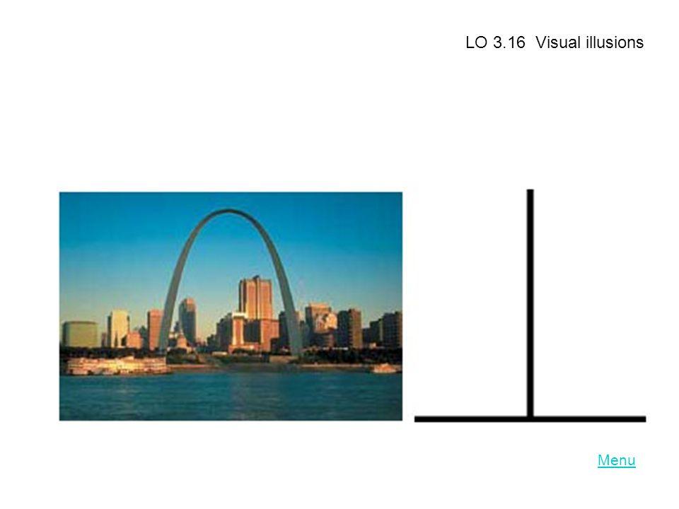 Menu LO 3.16 Visual illusions