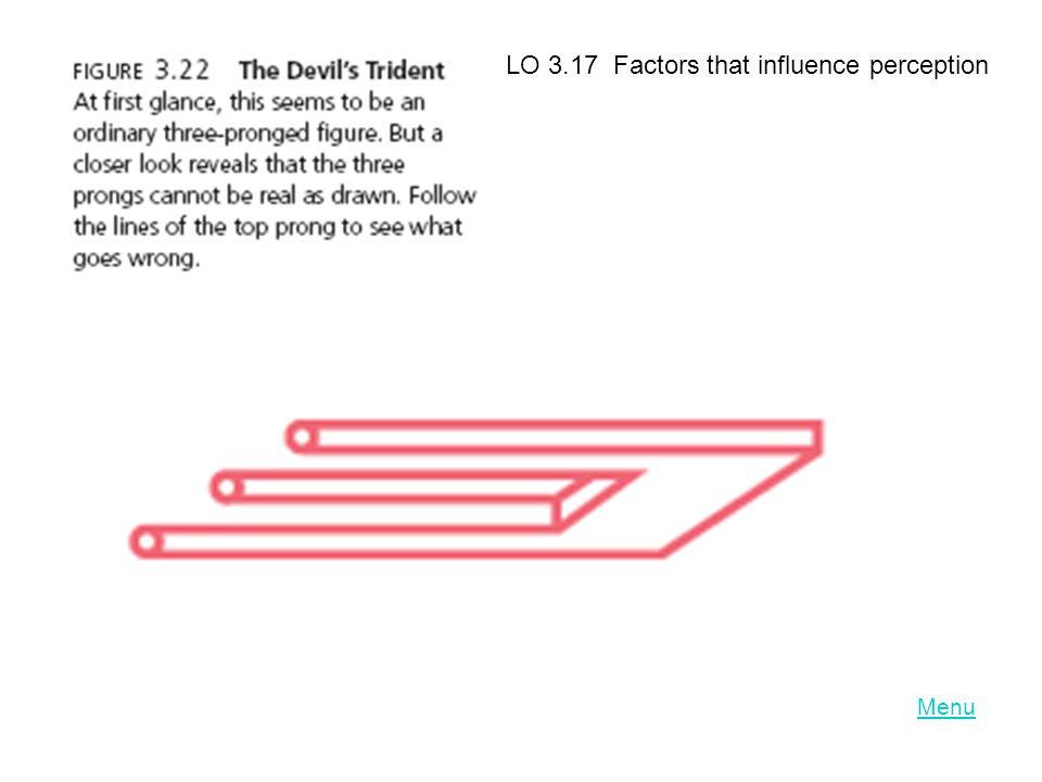 Menu LO 3.17 Factors that influence perception