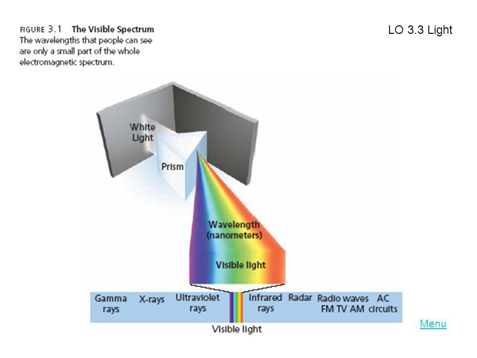 LO 3.3 Light