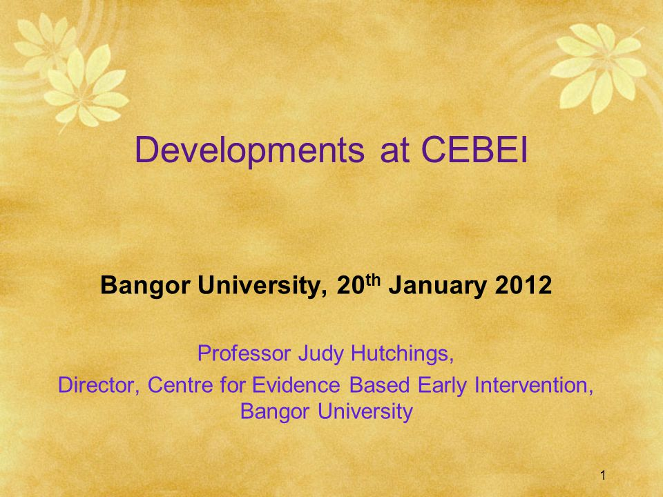 1 Developments at CEBEI Bangor University, 20 th January 2012 Professor Judy Hutchings, Director, Centre for Evidence Based Early Intervention, Bangor University