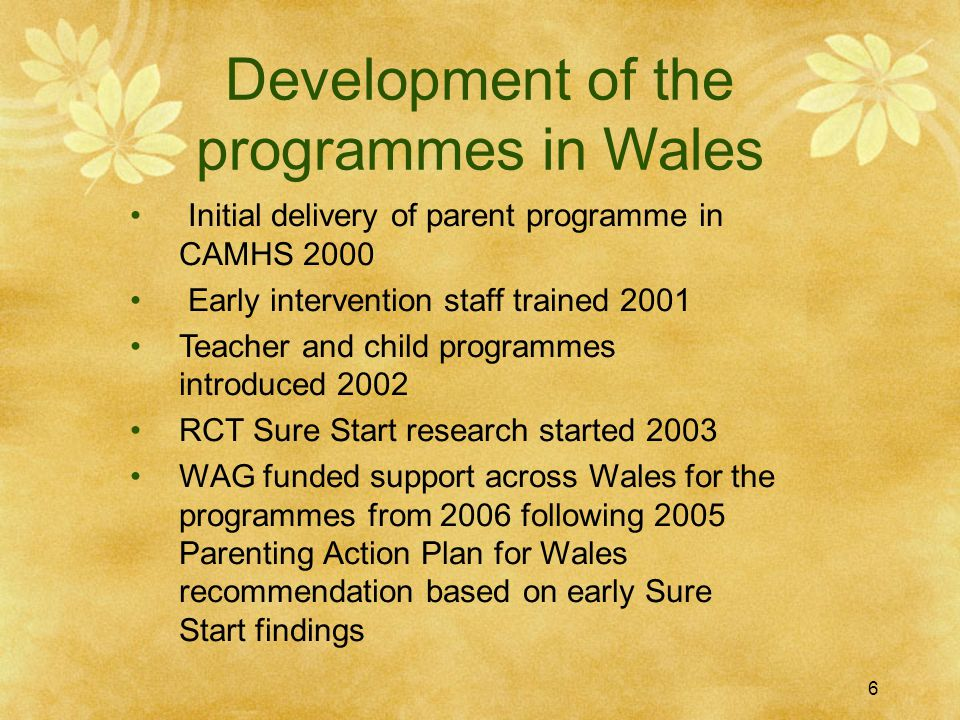 Welsh Government IY funding history  WG funding started in 2006/7  Basic parent leader training for all 22 Ays and supervision 2006/7 & 07/8  Resources purchased for each Authority  All Authorities accessed the training  Now in its 6 th year with a further two years planned