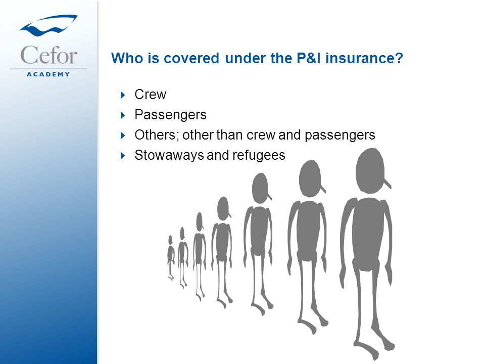 Who is covered under the P&I insurance?  Crew  Passengers  Others; other than crew and passengers  Stowaways and refugees