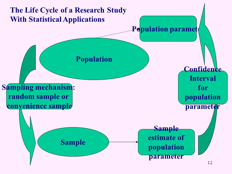 Population Sample Sample estimate of population parameter Population parameter Sampling mechanism: random sample or convenience sample Confidence Interval for population parameter 12 The Life Cycle of a Research Study With Statistical Applications
