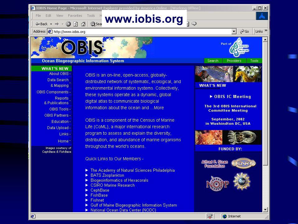 www.iobis.org