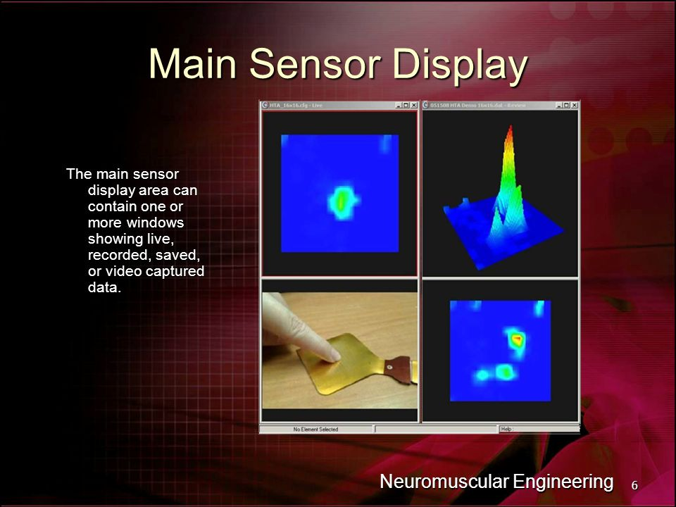 6 Neuromuscular Engineering Main Sensor Display The main sensor display area can contain one or more windows showing live, recorded, saved, or video captured data.