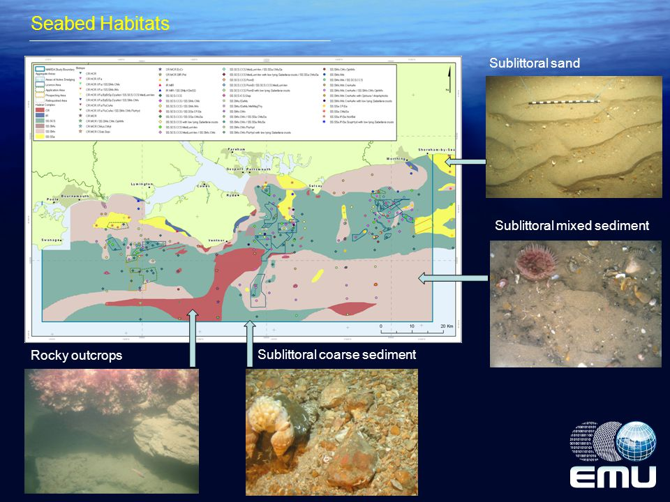 Seabed Habitats Insert Biotope map with some underwater images Sublittoral mixed sediment Sublittoral coarse sediment Rocky outcrops Sublittoral sand