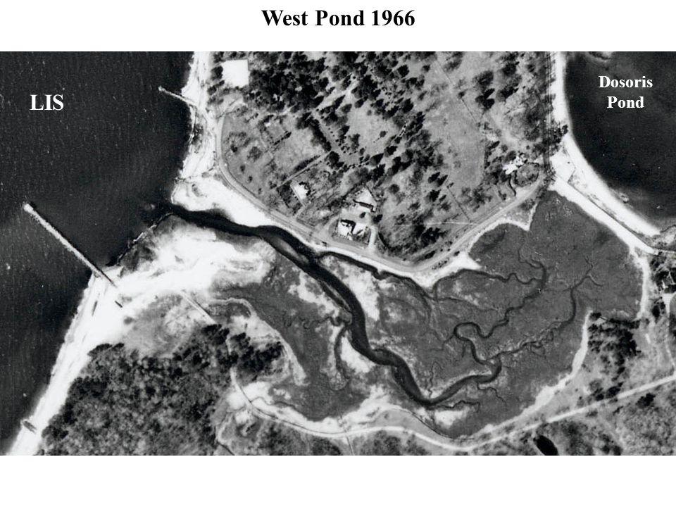 West Pond 1966 LIS Dosoris Pond
