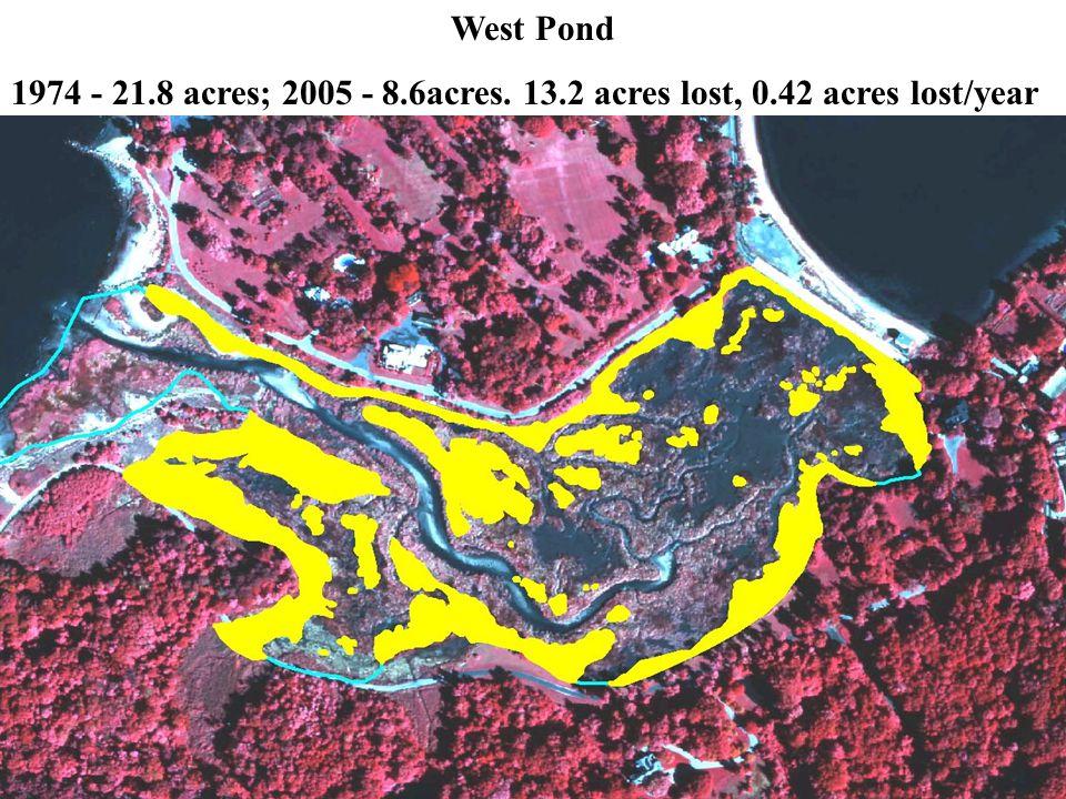 West Pond 1974 - 21.8 acres; 2005 - 8.6acres. 13.2 acres lost, 0.42 acres lost/year
