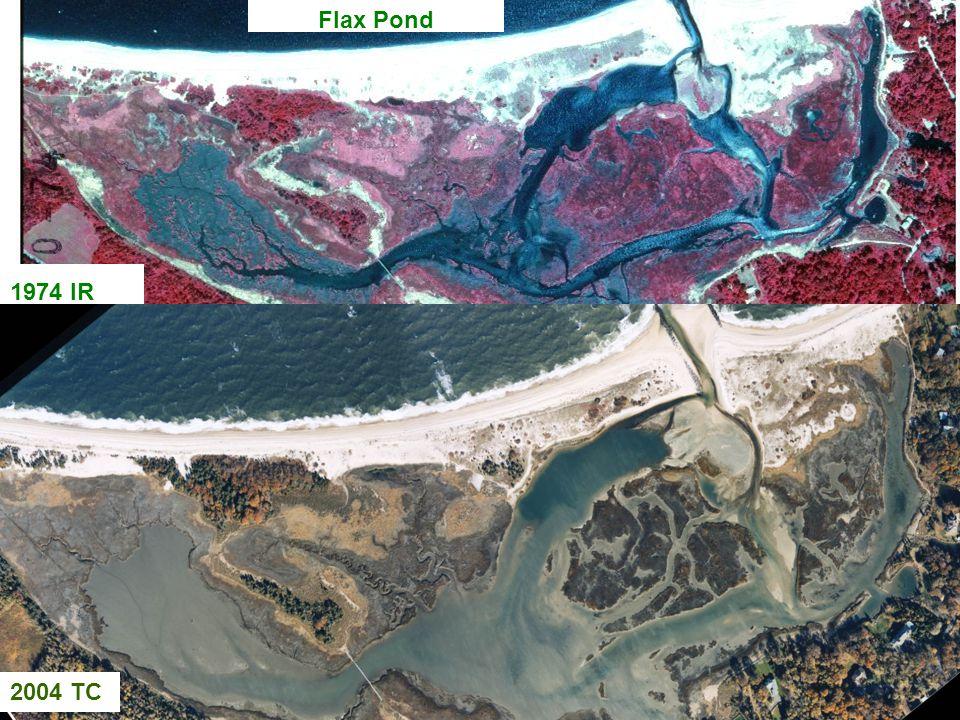 Flax Pond 1974 IR 2004 TC