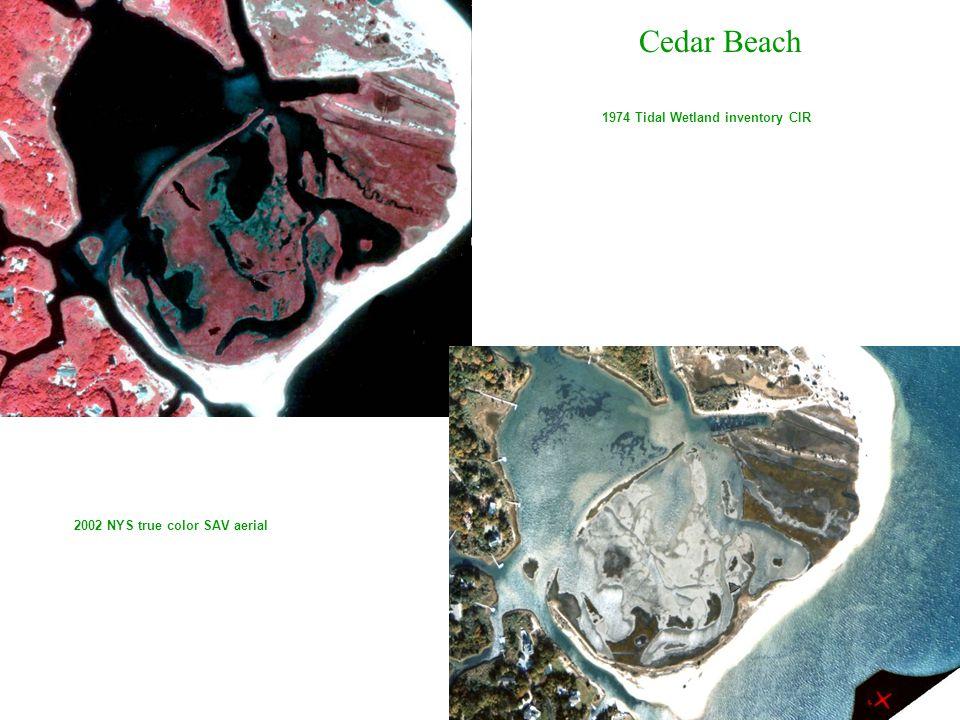 1974 Tidal Wetland inventory CIR 2002 NYS true color SAV aerial Cedar Beach