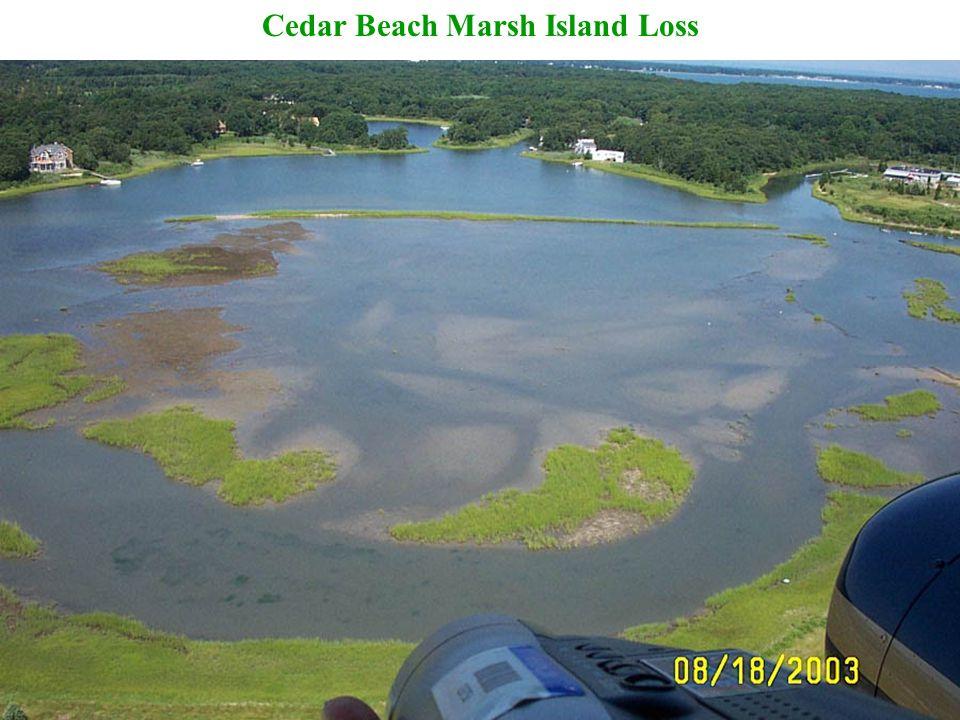 Cedar Beach Marsh Island Loss