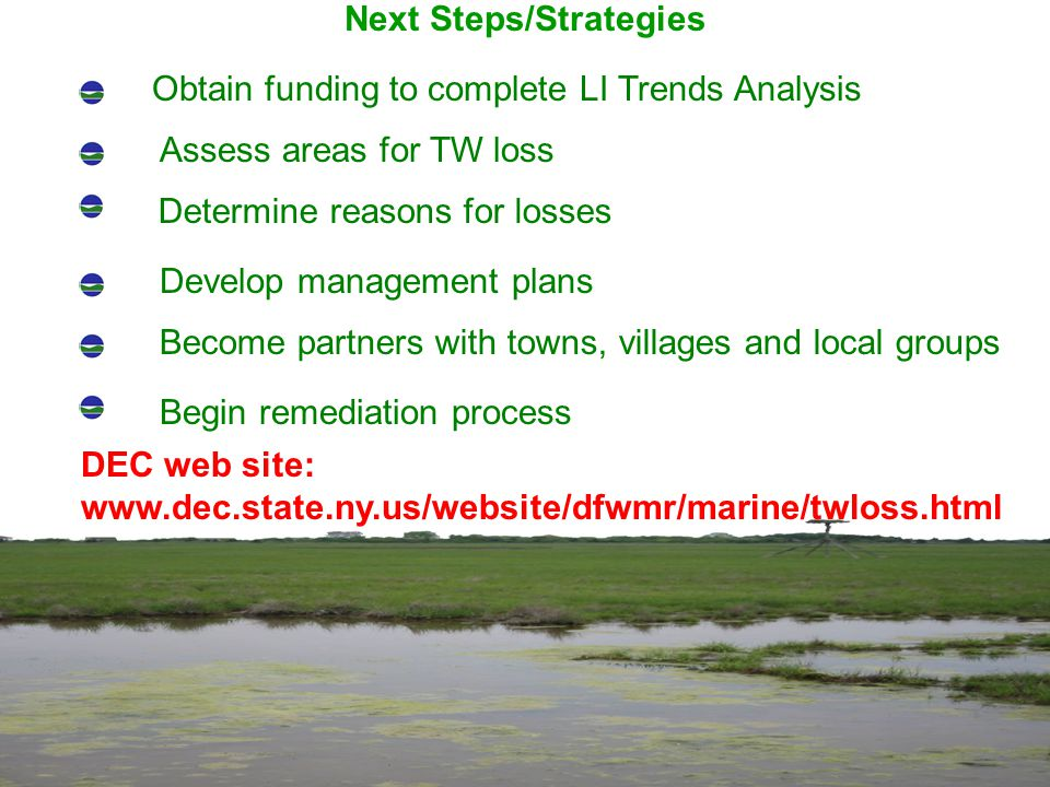 Next Steps/Strategies Obtain funding to complete LI Trends Analysis Assess areas for TW loss Determine reasons for losses Develop management plans Become partners with towns, villages and local groups Begin remediation process DEC web site: www.dec.state.ny.us/website/dfwmr/marine/twloss.html