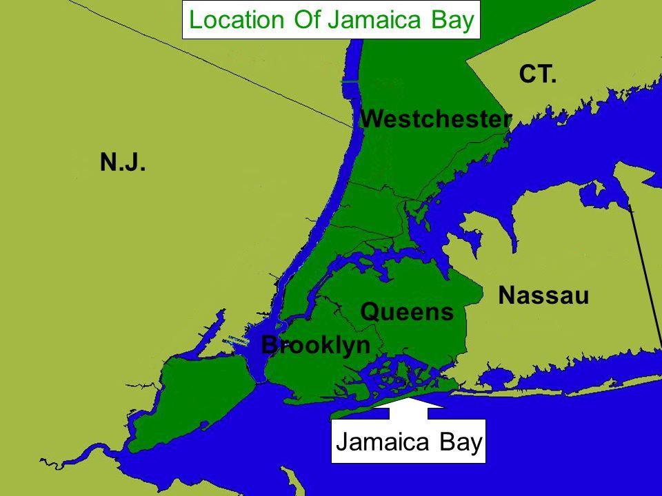 N.J. CT. Nassau Westchester Queens Brooklyn Location Of Jamaica Bay Jamaica Bay