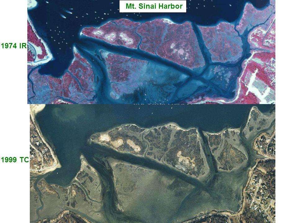 1974 IR 1999 TC Mt. Sinai Harbor