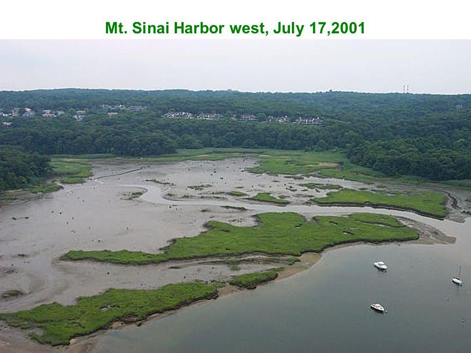 Mt. Sinai Harbor west, July 17,2001