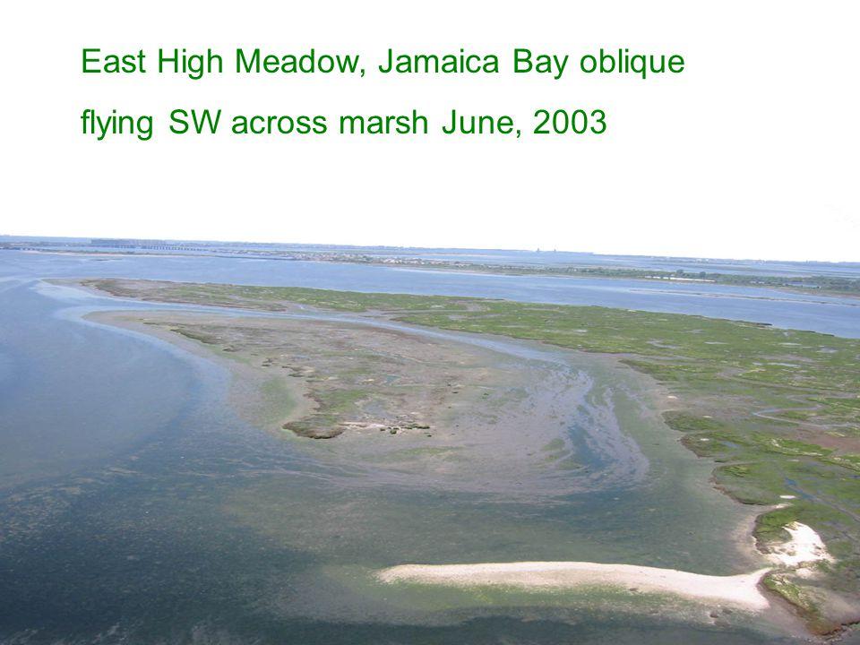 East High Meadow, Jamaica Bay oblique flying SW across marsh June, 2003