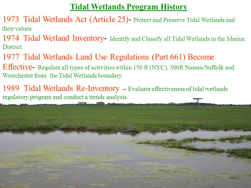 Tidal Wetlands Program History 1973 Tidal Wetlands Act (Article 25)- Protect and Preserve Tidal Wetlands and their values 1974 Tidal Wetland Inventory
