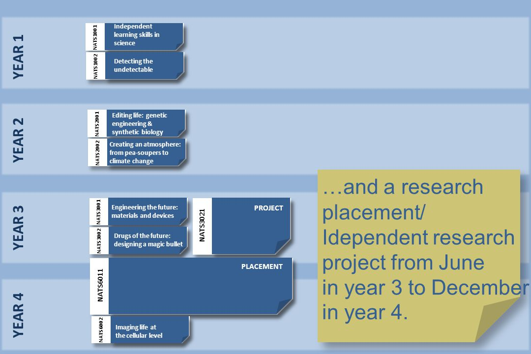 YEAR 1 YEAR 2 YEAR 3 YEAR 4 …and a research placement/ Idependent research project from June in year 3 to December in year 4. NATS3021 PROJECT NATS300