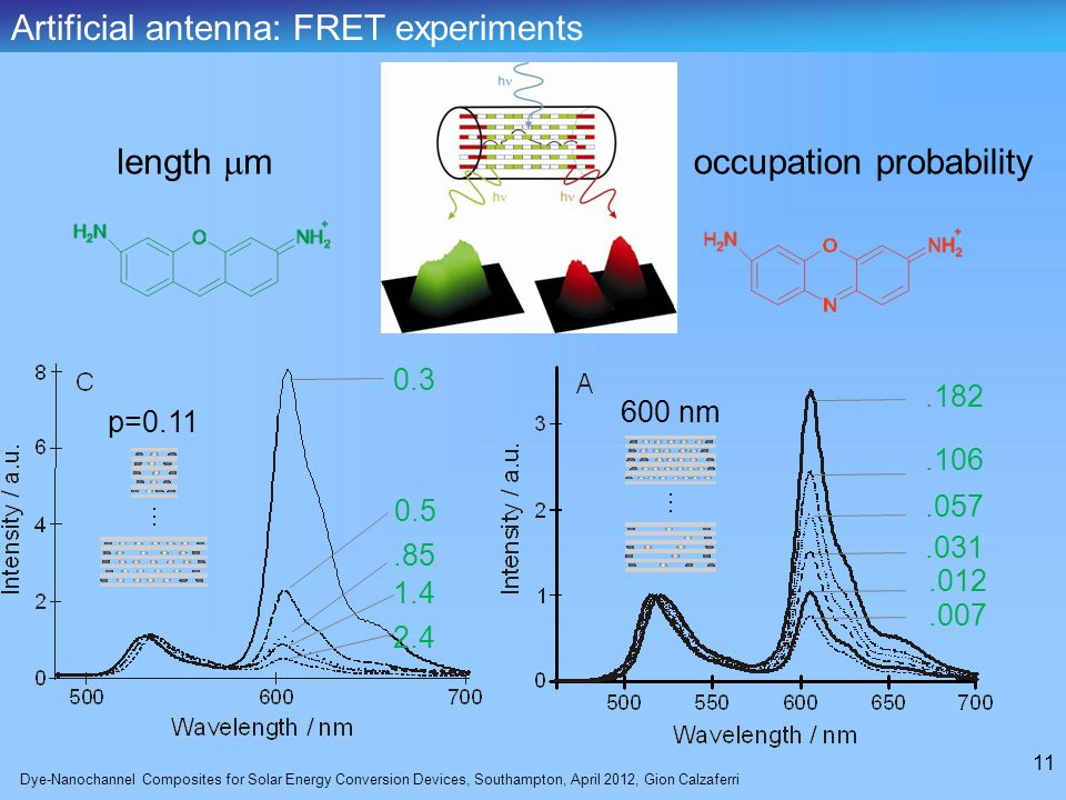 Dye-Nanochannel Composites for Solar Energy Conversion Devices, Southampton, April 2012, Gion Calzaferri 11 length  m occupation probability Artificial antenna: FRET experiments p=0.11 600 nm 0.3 0.5.85 1.4 2.4.182.012.106.007.031.057