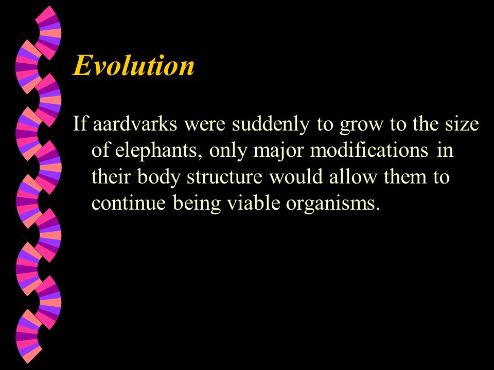 Evolution If aardvarks were suddenly to grow to the size of elephants, only major modifications in their body structure would allow them to continue being viable organisms.