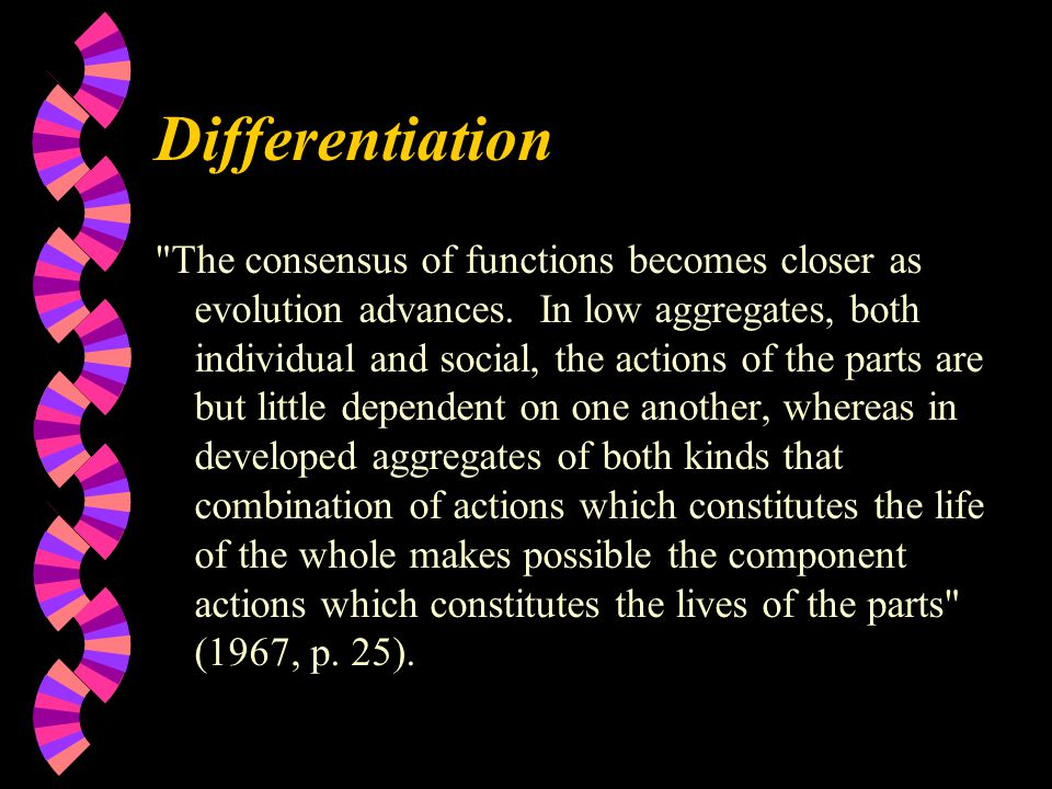 Differentiation The consensus of functions becomes closer as evolution advances.