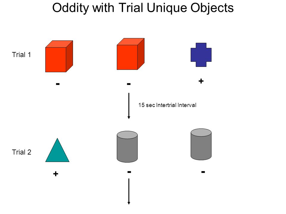 Learning A Non-Verbal Oddity Task