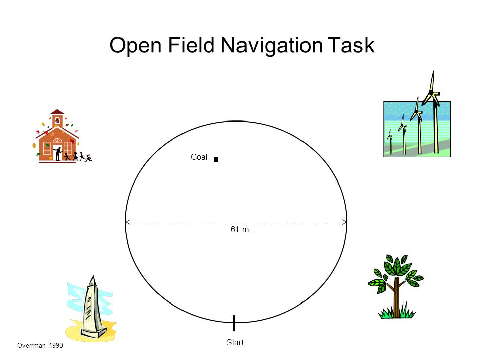 Open Field Navigation Task 61 m. Goal Start Overrman 1990