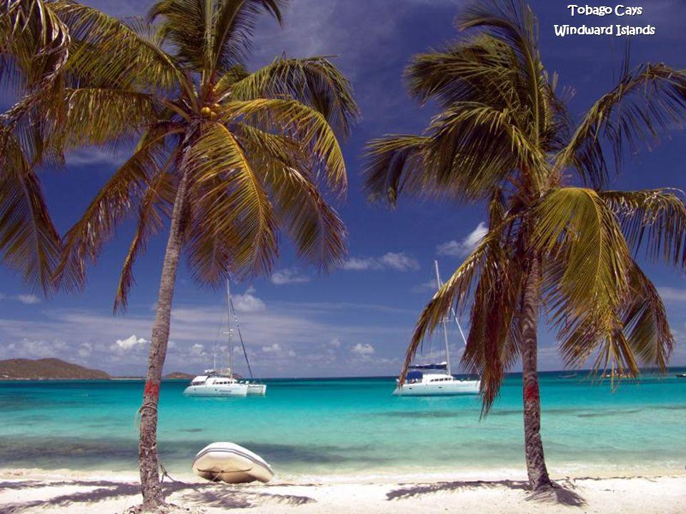 Smuggler s Cove Tortola Ilhas Virgens Britânicas