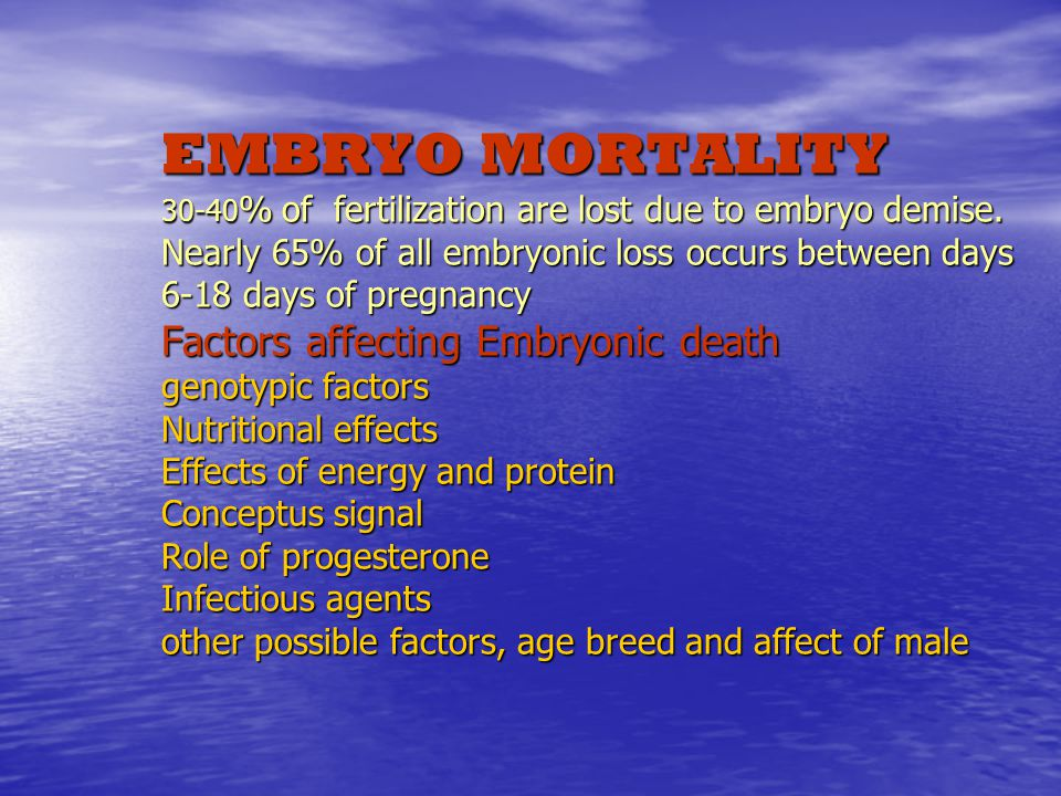 EMBRYO MORTALITY 30-40 % of fertilization are lost due to embryo demise.