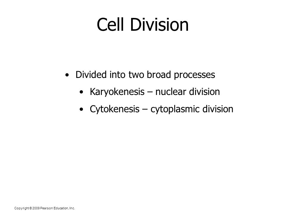 Copyright © 2009 Pearson Education, Inc. Cell Division Divided into two broad processes Karyokenesis – nuclear division Cytokenesis – cytoplasmic divi