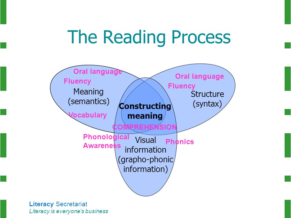 Literacy Secretariat Literacy is everyone's business Meaning (semantics) Structure (syntax) Visual information (grapho-phonic information) Constructin