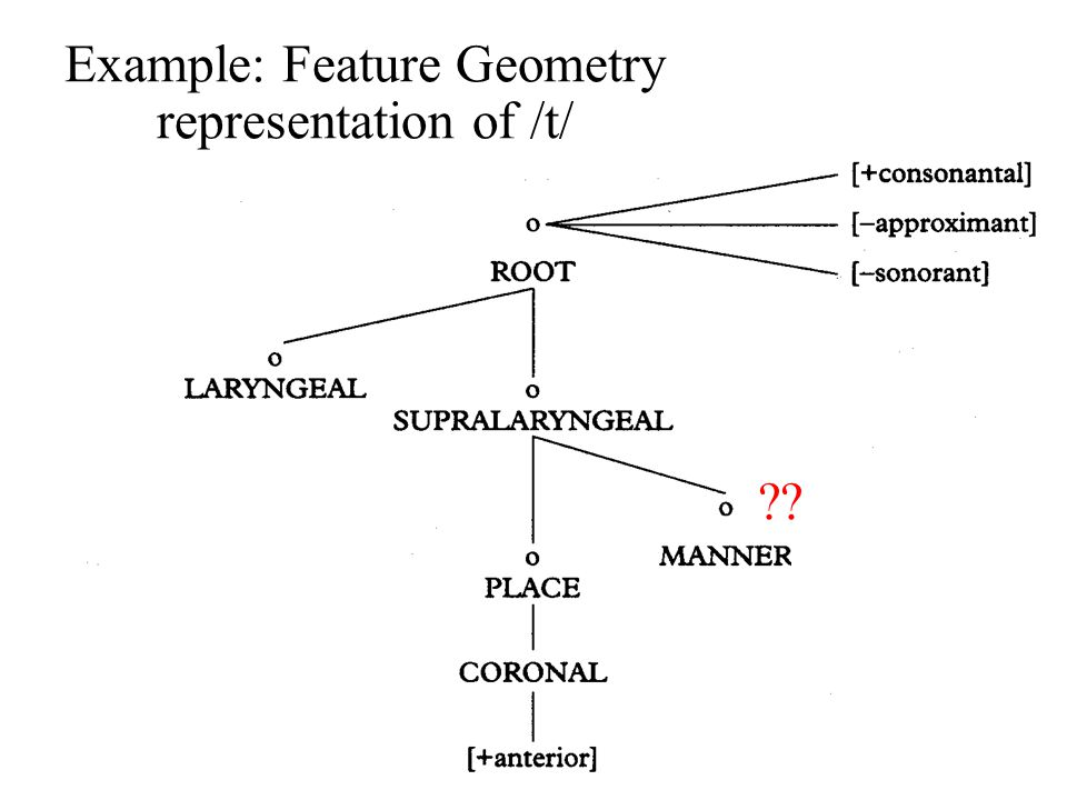 Example: Feature Geometry representation of /t/ ??