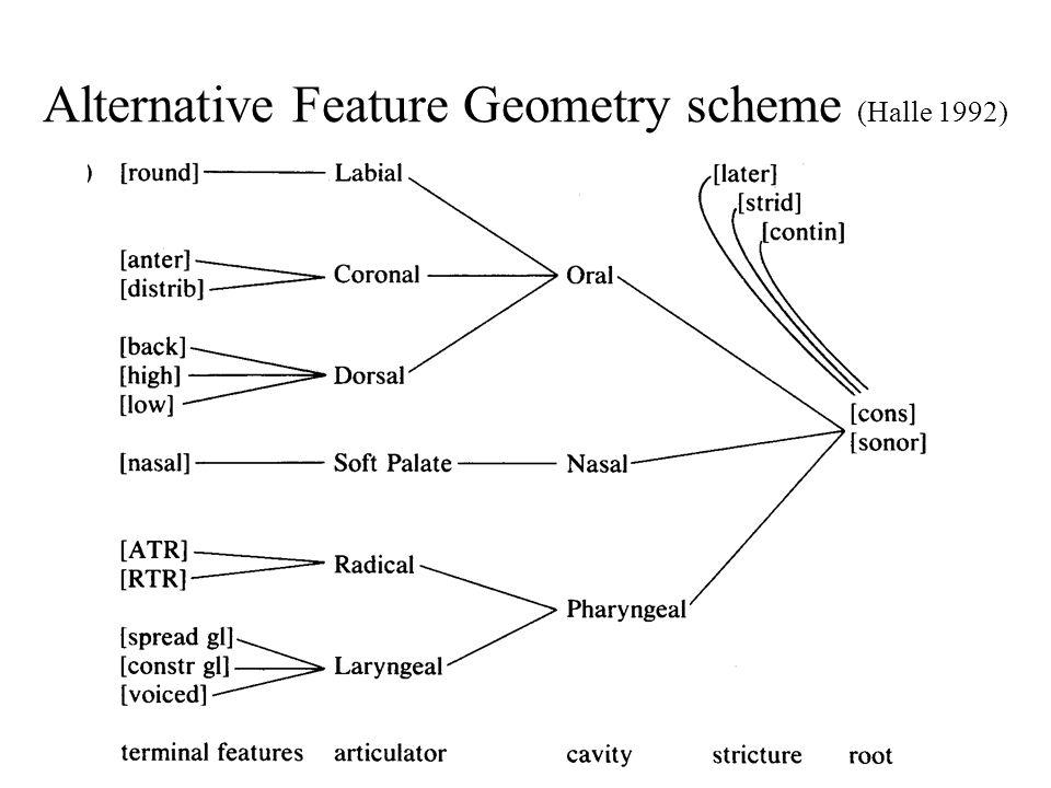 Alternative Feature Geometry scheme (Halle 1992)