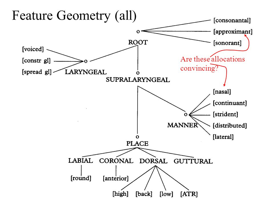 Feature Geometry (all) Are these allocations convincing?