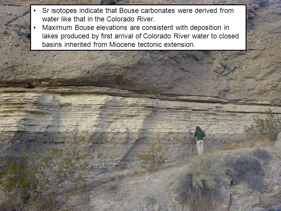 Sr isotopes indicate that Bouse carbonates were derived from water like that in the Colorado River.