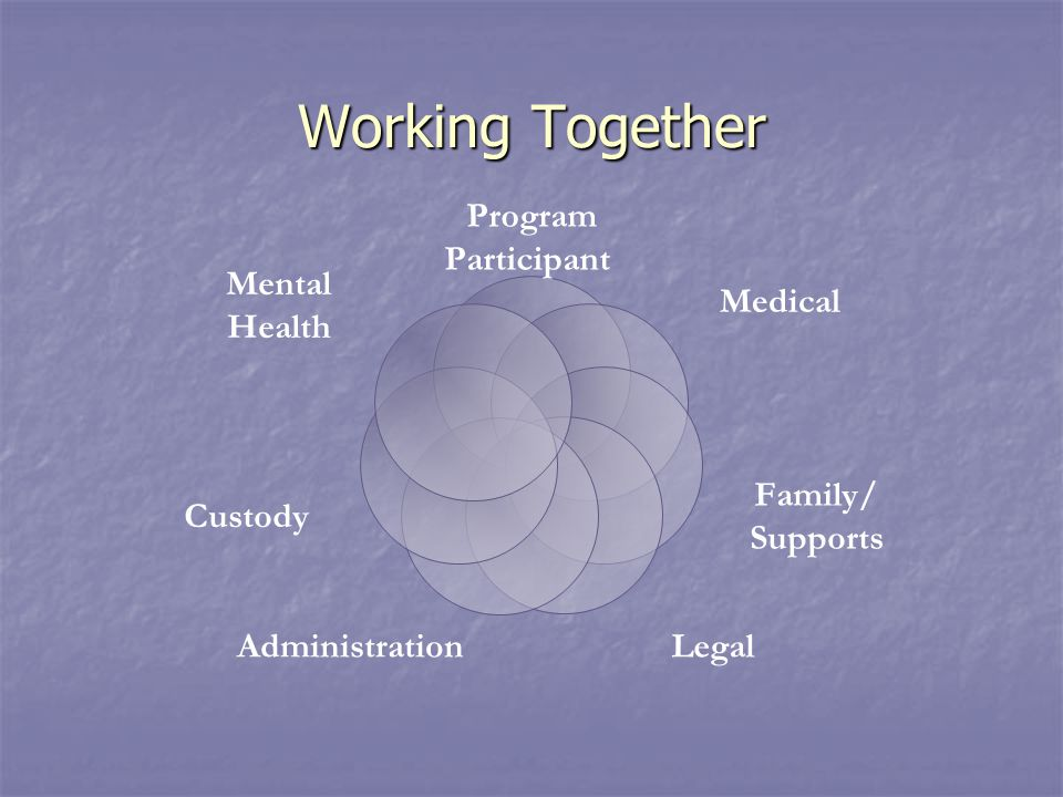 Working Together Program Participant Medical Family/ Supports LegalAdministration Custody Mental Health