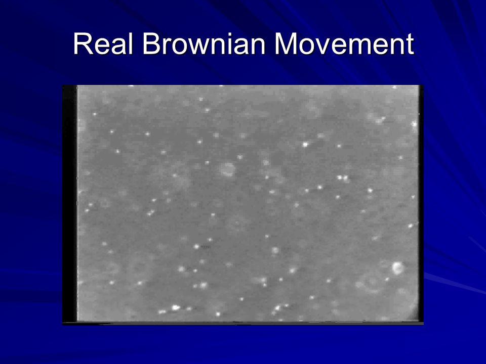 Real Brownian Movement