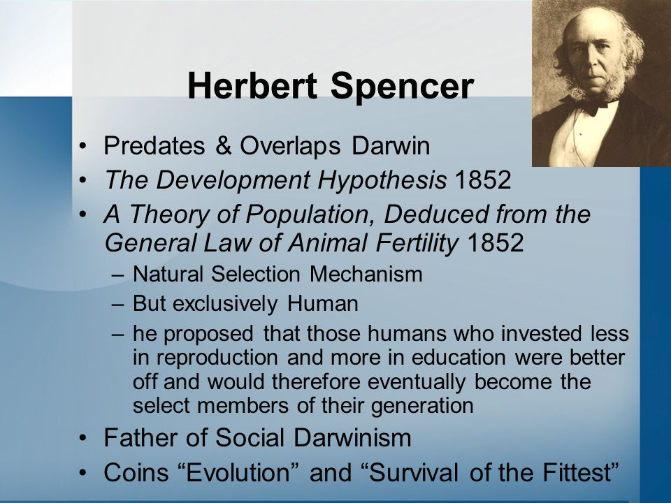 Herbert Spencer Predates & Overlaps Darwin The Development Hypothesis 1852 A Theory of Population, Deduced from the General Law of Animal Fertility 1852 –Natural Selection Mechanism –But exclusively Human –he proposed that those humans who invested less in reproduction and more in education were better off and would therefore eventually become the select members of their generation Father of Social Darwinism Coins Evolution and Survival of the Fittest