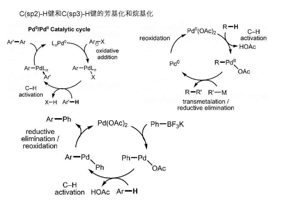 C(sp2)-H 键和 C(sp3)-H 键的芳基化和烷基化
