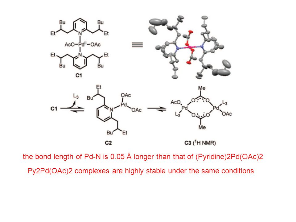 the bond length of Pd-N is 0.05 Å longer than that of (Pyridine)2Pd(OAc)2 Py2Pd(OAc)2 complexes are highly stable under the same conditions