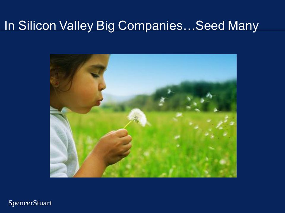 In Silicon Valley Big Companies…Seed Many
