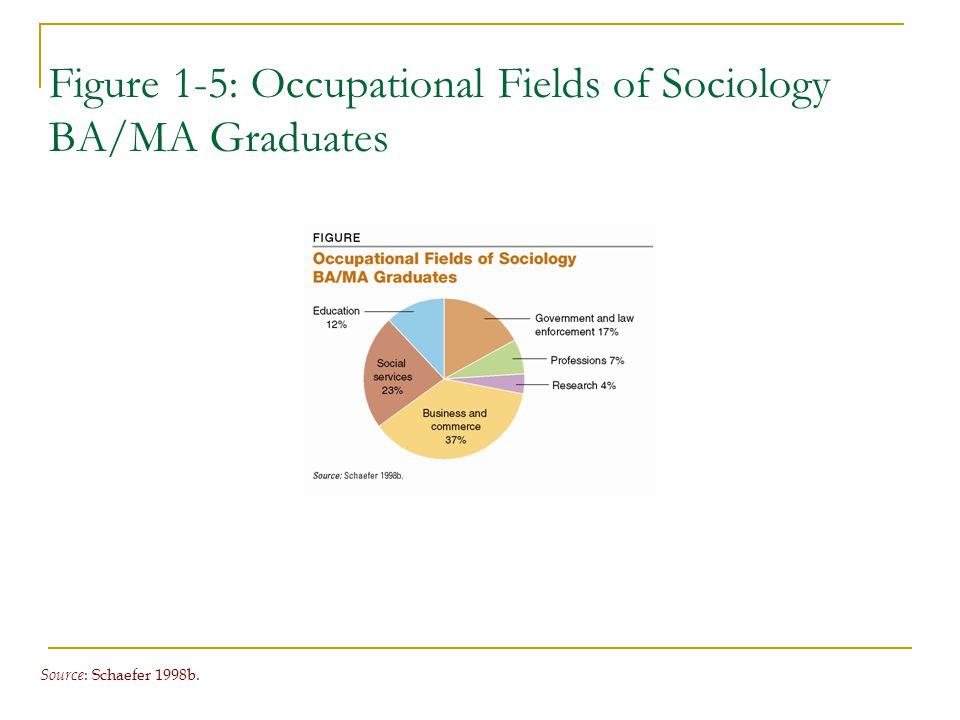 Figure 1-5: Occupational Fields of Sociology BA/MA Graduates Source : Schaefer 1998b.