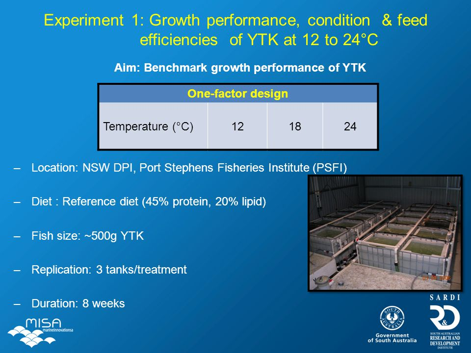 Experiment 1: Growth performance, condition & feed efficiencies of YTK at 12 to 24°C –Location: NSW DPI, Port Stephens Fisheries Institute (PSFI) –Die