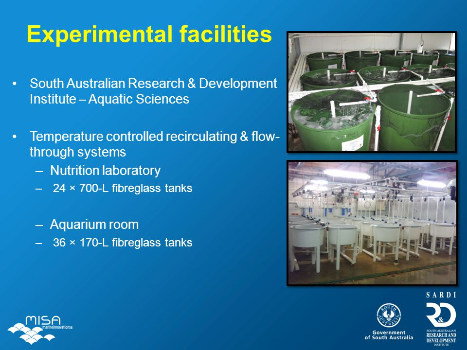 Experimental facilities South Australian Research & Development Institute – Aquatic Sciences Temperature controlled recirculating & flow- through syst